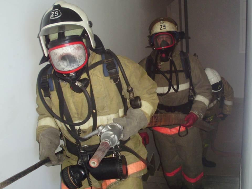 Пожарно-спасательные подразделения МЧС России ликвидировали пожар на территории Гусевского ГО